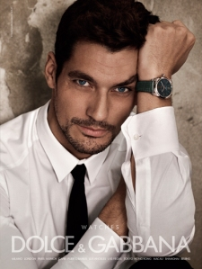 copyright D&G; David J Gandy